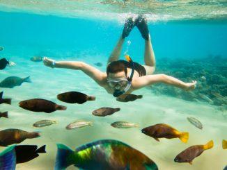 immersioni a siracusa